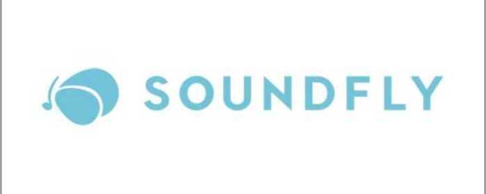 SOUNDFLY music school