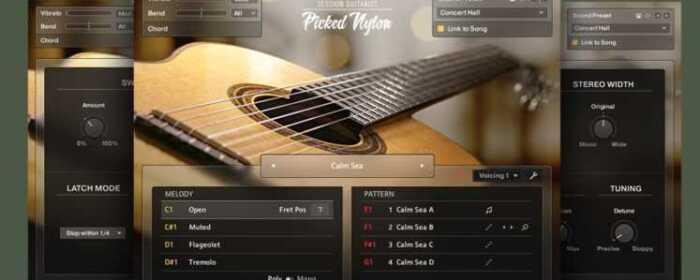 SESSION GUITARIST – PICKED NYLON